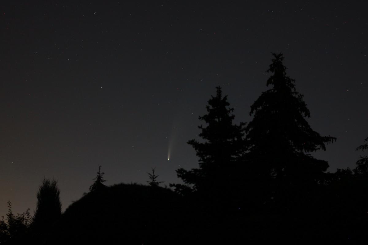 Galeria: Kometa na wakacyjnym niebie